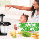Best Juicers For Wheatgrass 2021 Reviews And Best Buying Guide