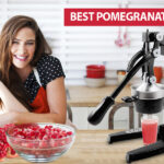 Best Pomegranate Juicer in 2021 Reviews & Buyer Guide - 10 Best Juicers