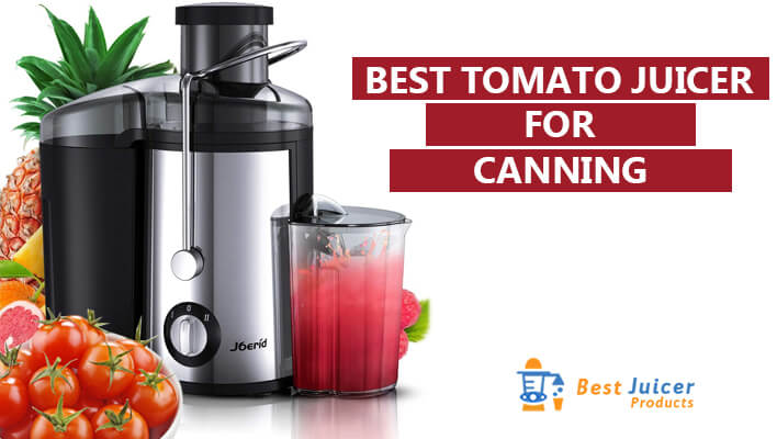 Best Electric Tomato Juicer For Canning